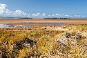 Hilbre Island and Little Hilbre Island viewed from the dunes near Hilbre Point at the mouth of the Dee Estuary, Wirral, UK. March 2016. - Alan  Williams
