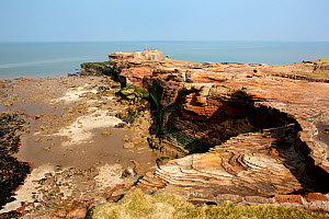 Hilbre Island - view of north end with sandstone cliffs and shore at low tide with  the old lifeboat station and bird watching hide above. Brick reinforcement of base of cliffs also visible, River Dee... - Alan  Williams