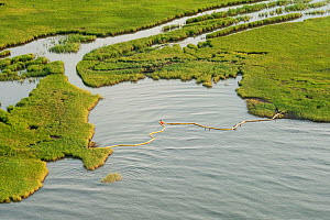 Aerial view of oil containment boom protecting Queen Bess Island, Grande Isle, Louisiana, Gulf of Mexico, USA, August 2010 - Mark Carwardine