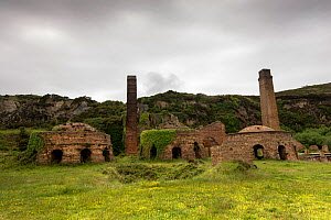 Brick kilns at the derelict Porth Wen brickworks, near Bull Bay, Anglesey, Wales, UK October 2012 - Graham Eaton