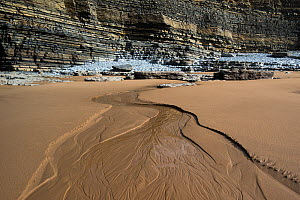 Small braided stream flowing across a beach with Jurassic age, Liassic limestone cliffs in the background, Southerndown, Wales, UK. - Graham Eaton
