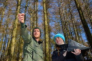 David Bavin using a wedge prism relascope to record the tree density of coniferous plantation habitat where Pine martens (Martes martes) have been reintroduced by the Vincent Wildlife Trust as Josie B... - Nick Upton