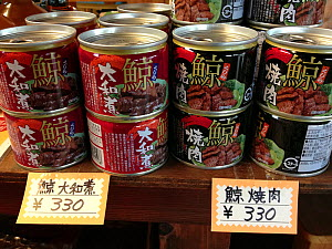 Canned whale meat for sale at a souvenir shop for tourists in Japan.  -  Nature Picture Library