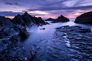 RF - Hartland Quay, late evening light, Hartland, Devon, UK. July . (This image may be licensed either as rights managed or royalty free.)  -  Ross Hoddinott
