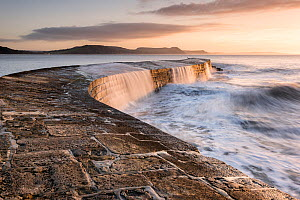 RF - The Cobb, breakwater, Lyne Regis, Dorset, UK. January 2016. (This image may be licensed either as rights managed or royalty free.)  -  Ross Hoddinott