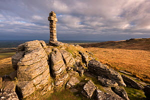 Widgery Cross in early morning light,  Brat Tor, Dartmoor National Park, Devon, England, UK, April 2016. - Ross Hoddinott