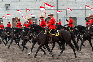 Mounted police officers parade, during the National American Police Equestrian Competition (NAPEC), at Kingston Penitentiary, Kingston, Ontario, Canada. September 2016.  -  Kristel  Richard