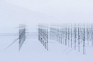 Antennas from Sousy Svalbard Radar (SSR) Project, Spitsbergen, Svalbard, Norway, April - Ingo Arndt