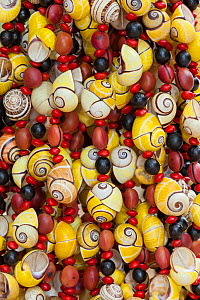 Necklaces made from endemic Polymita land snails for sale to tourists. Cuba. - Ingo Arndt
