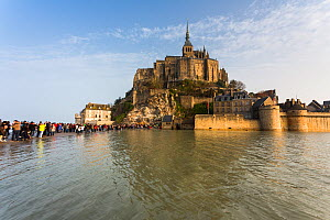 Mont-Saint-Michel, with high spring tide, Normandy. France March 2015  -  Christophe Courteau