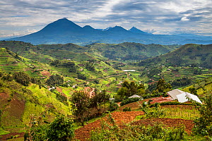 Deforestation for agriculture on hills near Bwindi Impenetrable Forest NP, Uganda.  -  Christophe Courteau