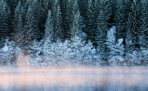 RF - Cold winterday at Nidelva river. Klaebu, Norway. (This image may be licensed either as rights managed or royalty free.) - Erlend Haarberg