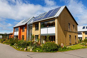 Ecological sustainable housing with solar panels. Findhorn Foundation, Forres, Inverness, Scotland, UK, August. - Chris Mattison