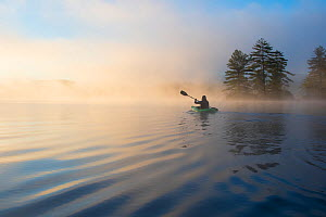 RF - Kayaking at dawn. Grafton Pond, Enfield, New Hampshire, United States. Model released. (This image may be licensed either as rights managed or royalty free.) - LYNN M. STONE