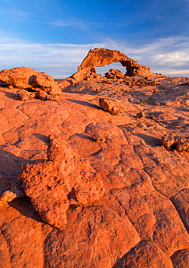 Sunset Arch at dawn. Grand Staircase-Escalante National Monument, USA, October.  -  Jack Dykinga