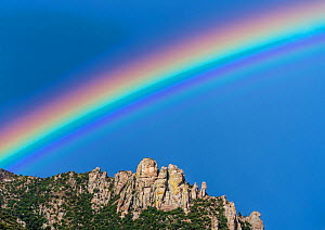 Rainbow over Geology Vista, with Granite spires form a jagged edge to mountain top ridges. Santa Catalina Mountains, Coronado National Forest, Arizona, USA, September. - Jack Dykinga