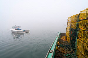 Lobster boat sits in morning fog at harbour, Yarmouth, Maine, USA October  -  Jeff Rotman