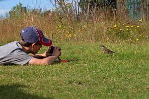 Boy photographing an Icelandic Redwing (Turdus iliacus coburni), Iceland, August. Model released - Robin Chittenden