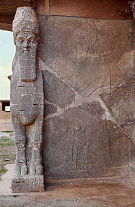 Ancient Assyrian human headed bull guarding the doorway to the palace of King Ashur Nasipal II at Nimrud, Iraq. . In 2014 Hatra was taken over by Islamic State militants and much of the site was destr...  -  Kim Taylor
