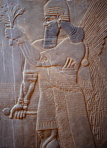Ancient Assyria alabaster carving from the palace of King Ashur Nasipal II at Nimrud, Iraq.. In 2014 Hatra was taken over by Islamic State militants and much of the site was destroyed in 2015. - Kim Taylor