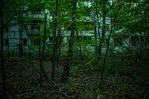 Abandoned tower block in Pripyat, Chernobyl Exlusion Zone, Ukraine September  -  Luke Massey