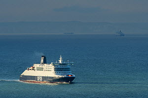 Cross-channel ferry. English Channel with French coast in background, Dover, Kent, UK. July - Terry  Whittaker