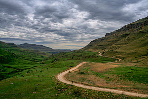 Winding road leading through the Sani Pass. Drakensberg Mountains from South Africa to Lesotho. November 2009  -  Jen Guyton