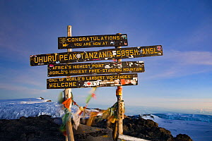 Sign at the summit of Mount Kilimanjaro, Uhuru Peak, Tanzania May 2008 - Jen Guyton