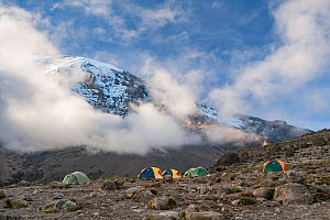 Camp beneath the summit on the Machame Trail, Mount Kilimanjaro, Tanzania. May 2008 - Jen Guyton