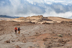 Hikers along the Machame Trail, Mount Kilimanjaro, Tanzania. May 2008. - Jen Guyton