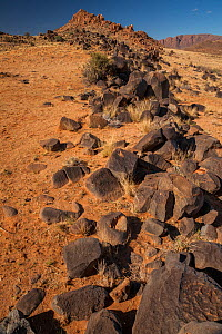 'Singing rocks'  which make a resonating clang when banged together because of their high iron content. Namib Desert, Namibia - Jen Guyton