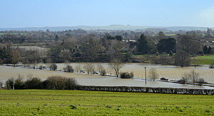 Cars driving on road flooded by the River Avon overflowing its banks, Staverton, near Trowbridge, Wiltshire, UK, February 2014. - Nick Upton