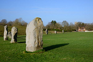 Neolithic megaliths, Avebury Stone Circle, Wiltshire, UK, February 2014. - Nick Upton