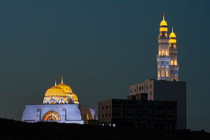 Mohammed Al Ameen Mosque at night, Muscat, Sultanate of Oman.  -  Martin Gabriel