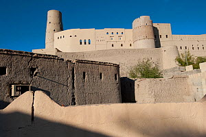 Bahla Fortress, the oldest fortress of Oman (13th century), UNESCO World Heritage Site, Sultanate of Oman  -  Martin Gabriel