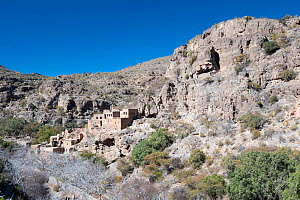 Mountain scenery and ruins of an old village, Saq Plateau, Sultanate of Oman, February. - Martin Gabriel