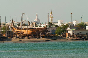 Sur, a city at the coast of Oman, with mosques and a traditional dock for the construction of wooden boats, Sultanate of Oman, February. - Martin Gabriel