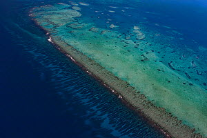 Aerial view of southern Belize barrier reef, showing Gladden Spit, where there is a sharp bend in the reef, and showing spur and groove coral formations outside of the reef crest. Gladden Spit and Sil...  -  Doug Perrine