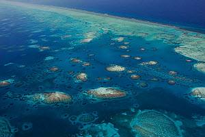 Aerial view of southern Belize barrier reef, showing Gladden Spit and Silk Cayes Marine Reserve. UNESCO Natural World Heritage Site, Belize, Central America. Caribbean Sea.  -  Doug Perrine