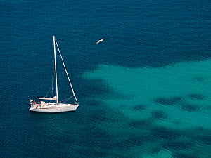Boat over on the Mediterranean sea with patches of darker waters showing beds of Mediterranean seagrass (Posidonia oceanica), Western Mediterranean Sea, Ibiza UNESCO World Heritage Site, Spain - Angelo Gandolfi