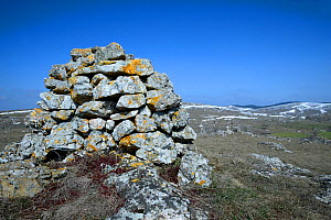 Stone cairn in upland landscape, Causse Mejean,  Cevennes National Park, France, March. - Fabrice  Cahez