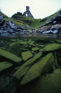 Split level view with house in flooded slate quarry on Belnahua island. Scotland. 1996 - Willem  Kolvoort