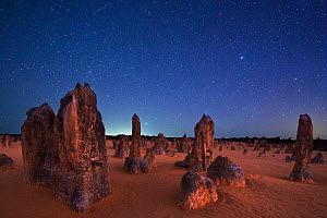 The Pinnacles at night, limestone formations. Nambung National Park, near Cervantes, Western Australia  -  David Noton