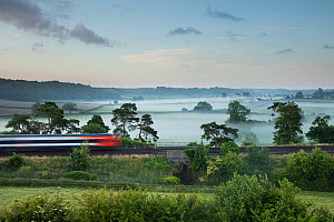 London Waterloo to Exeter train passing Milborne Wick on a misty summer's morning, Somerset, England, UK, June 2015.  -  David Noton