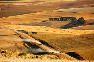 Rolling farmland in the Overberg region near Villiersdorp, Western Cape, South Africa.  December 2014. - David Noton