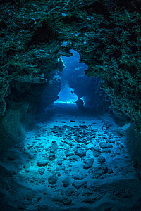 View through a cavern in a coral reef, with a Small grouper (Cephalopholis cruentata) in the distance. Snapper Hole, East End, Grand Cayman, Cayman Islands, British West Indies. Caribbean Sea.  -  Alex Mustard