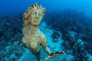 Statue of a mermaid 'Amphitrite', placed underwater on a coral reef as an attraction for divers. George Town, Grand Cayman, Cayman Islands, British West Indies. Caribbean Sea.  -  Alex Mustard