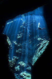 Diver explores a freshwater cenote (or limestone sinkhole) swimming through beams of sun light.  Kukulkan cenote, Chac Mool cenote, Puerto Aventuras, Quintana Roo, Yucatan, Mexico.  -  Alex Mustard