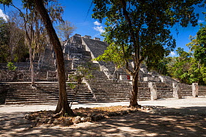 Structure II (Great Pyramid), one of the largest Mayan structures. This temple pyramid is built over a smaller pyramid which dates back to 400 BC-250 AD with later extensions added on to the building,...  -  Juan Manuel Borrero