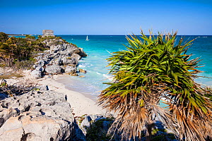 Coast off the pre-Columbian Mayan walled city, Tulum, with Temple of the God of Wind. Tulum National Park, Quintana Roo, Mexico.  -  Juan Manuel Borrero